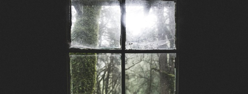 Photo of a dark wall with a grimy window, looking out on a forest with lichen on trees