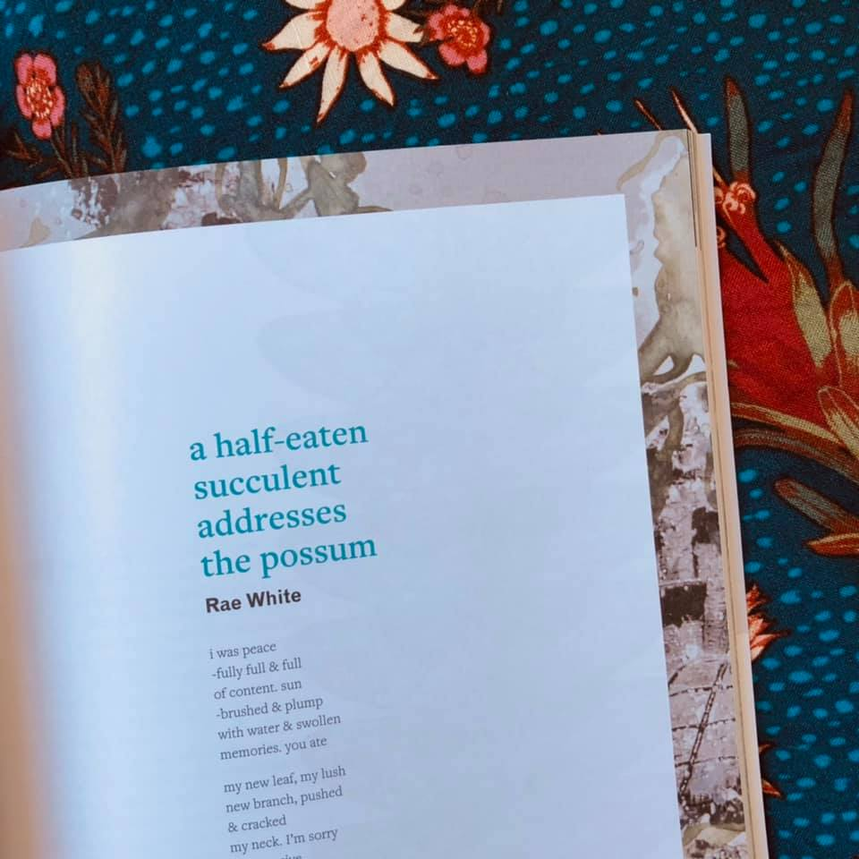 Photo of a magazine spread on a blue floral background. The text on the magazine shows the title in blue 'a half-eaten succulent addresses the possum' by Rae White. The start of the poem text reads, 'i was peace / -fully full & full / of content. sun / -brushed & plump / with water & swollen / memories. you ate / my new leaf, my lush / new branch, pushed / & cracked / my neck. I'm sorry '